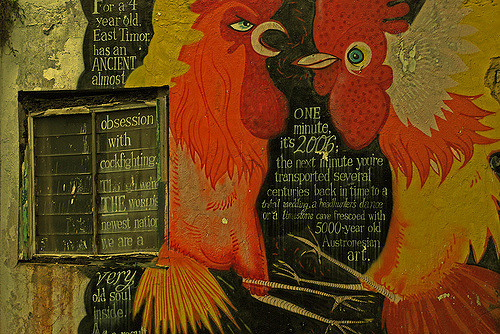 cock-fight-Ivan-Low-flickr
