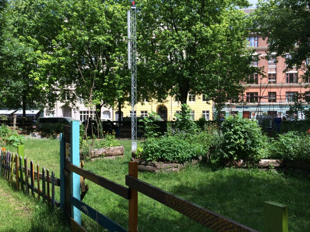 Kööpenhaminassa on helppoa liikkua polkupyörällä niin autojen vierellä kuin omia reittejään kiertävillä kevyen liikenteen väylillä. Kaupunki on täynnä kiinnostavia yksityiskohtia kuten tämä kansalaisten yrttitarha Nörrebron kaupunginosassa. Kuva: Vesa Niinikangas